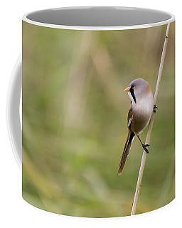 Bearded Reedling Coffee Mug