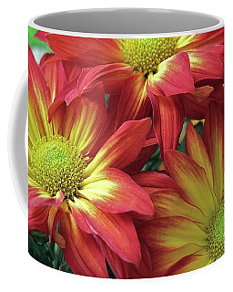 Coffee Mug featuring the photograph Beautiful Trio by Allen Beatty