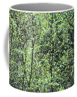 Birch Leaves Coffee Mug by Dariusz Gudowicz