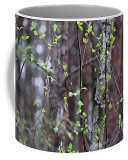 Birch Tree Coffee Mug by Dariusz Gudowicz
