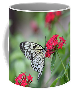 Coffee Mug featuring the photograph Black And White Butterfly  by Raphael Lopez