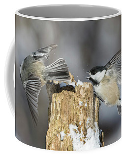 Coffee Mug featuring the photograph Black-capped Chickadee In Winter by Mircea Costina Photography