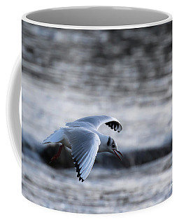 Coffee Mug featuring the photograph Black Headed Gull by Brian Roscorla