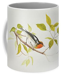 Blackburnian Warbler Coffee Mug