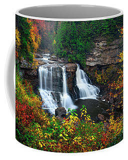 Blackwater Falls State Park Coffee Mug