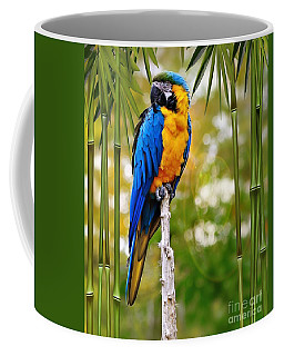 Blue And Yellow Macaw Coffee Mug by Elaine Manley