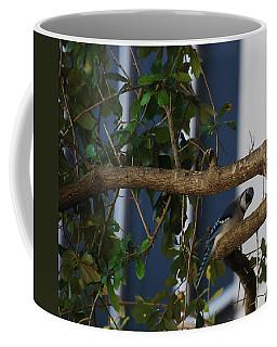 Coffee Mug featuring the photograph Blue Bird by Rob Hans