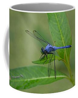 Blue Dasher - Dragonfly Coffee Mug