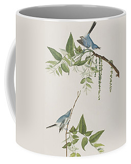 Blue Grey Flycatcher Coffee Mug