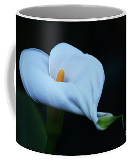 Coffee Mug featuring the photograph Calla Lily 2 by Cindy Manero