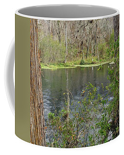 Ripples In The Water Coffee Mug