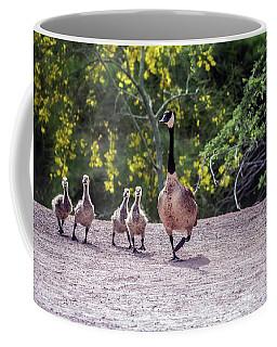 Canada Goose And Goslings 7581-042618-1 Coffee Mug