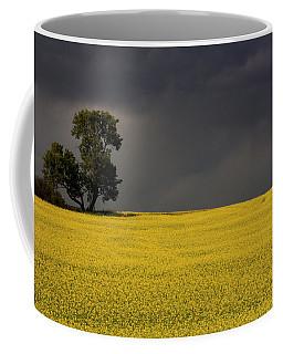 Canola Storm Coffee Mug