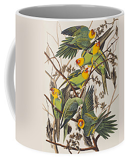 Carolina Parrot Coffee Mug