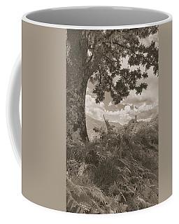 Castello Di Comano Coffee Mug