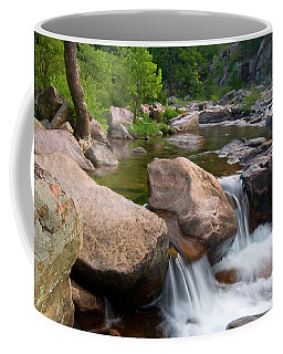 Castor River Shut-ins Coffee Mug by Steve Stuller