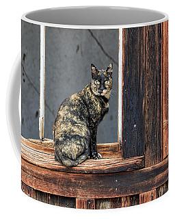 Cat In A Window Coffee Mug