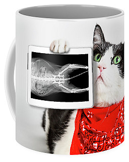 Cat With X Ray Plate Coffee Mug