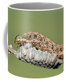 Caterpillar And Parasitic Wasp Eggs Coffee Mug