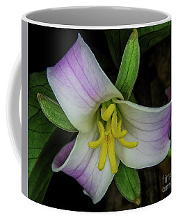 Catesby Trillium Coffee Mug by Barbara Bowen
