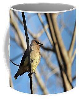 Cedar Wax Wing Coffee Mug
