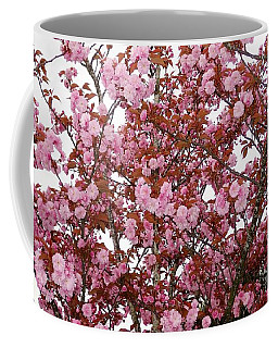 Coffee Mug featuring the photograph Cherry Blossoms  by Victor K