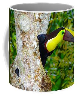 Chestnut-mandibled Toucan Coffee Mug