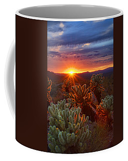 Cholla Sunset  Coffee Mug