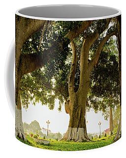 City Park Buon Me Thuot Coffee Mug