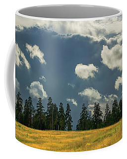 Coffee Mug featuring the photograph Cloudy 2 by Vladimir Kholostykh