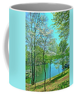 Cluster Of Dowood Trees Coffee Mug