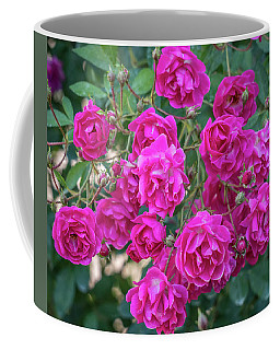Cluster Of Roses Coffee Mug by Jane Luxton