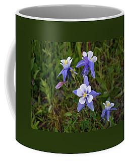 Colorado Columbine Coffee Mug by Steve Stuller