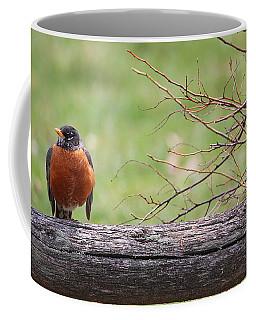Country Living Coffee Mug