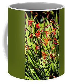 Crocosmia Coffee Mug