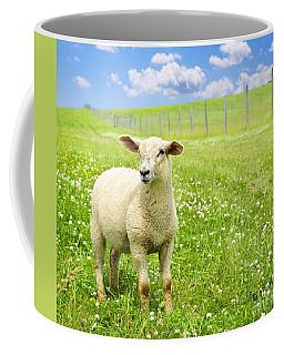 Cute Young Sheep Coffee Mug