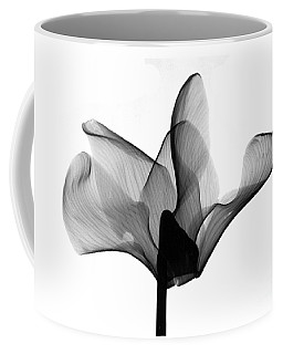 Cyclamen Flower X-ray Coffee Mug
