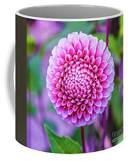Coffee Mug featuring the photograph Dahlia by Zaira Dzhaubaeva