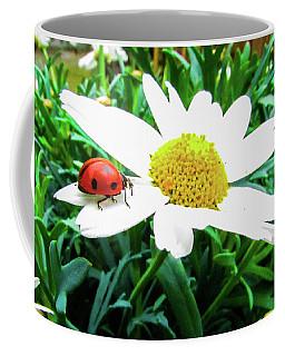 Daisy Flower And Ladybug Coffee Mug by Cesar Vieira