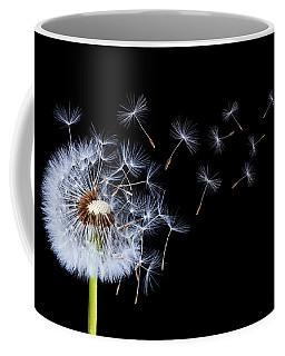 Dandelion On Black Background Coffee Mug
