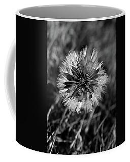 Dandelion With Dewdrops Coffee Mug