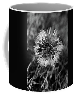 Dandelion With Dewdrops Coffee Mug