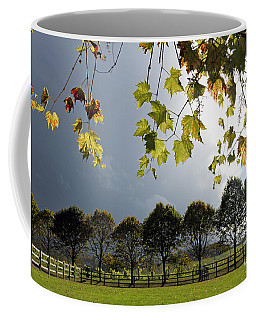 Denbies Vineyard Surrey Uk Coffee Mug