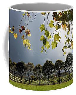 Denbies Vineyard Surrey Uk Coffee Mug