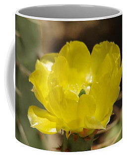 Desert Flower Coffee Mug