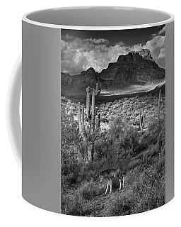 Desert Foal Coffee Mug