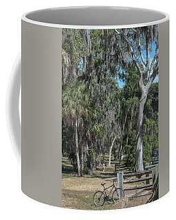 Down The Path Coffee Mug by Jane Luxton