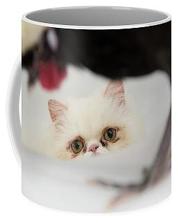 Dreaming Big Coffee Mug