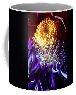 Dying Purple Chrysanthemum Flower Background Coffee Mug