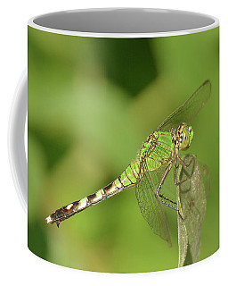 Eastern Pond Hawk Dragonfly Coffee Mug